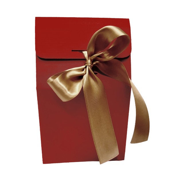 Gift bag with gold ribbon